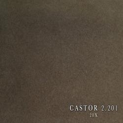 CASTOR 2.201