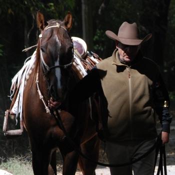 Texana 3Ox Oscar